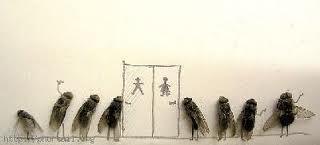 Pékin limite à deux le nombre de mouches dans les toilettes publiques