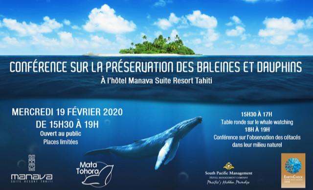 Le respect des baleines à bosser