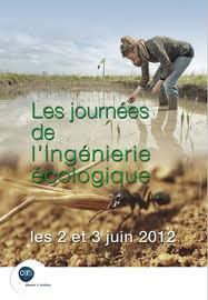 Le CNRS invite sur ses sites de réhabilitation écologique de zones polluées