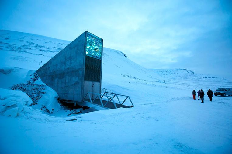 """L'""""Arche de Noé végétale"""" s'étoffe en plein coeur de l'Arctique"""