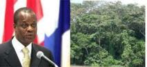 Les grands bassins forestiers tropicaux devraient signer un accord à Rio