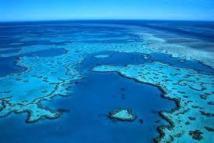La grande barrière de corail menacée par le boom de l'exploitation minière