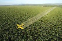La pulvérisation aérienne d'insecticides se répand et fait polémique
