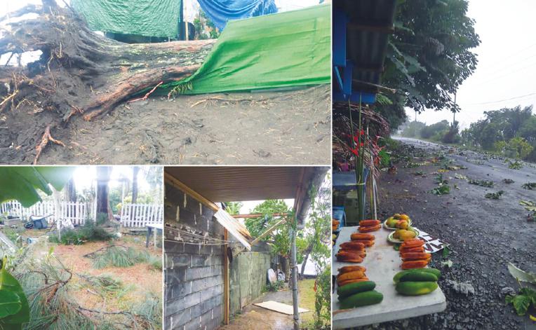 De Mahina à Papeari en passant par Hitia'a, les rafales de vent ont causé de nombreux dégâts.