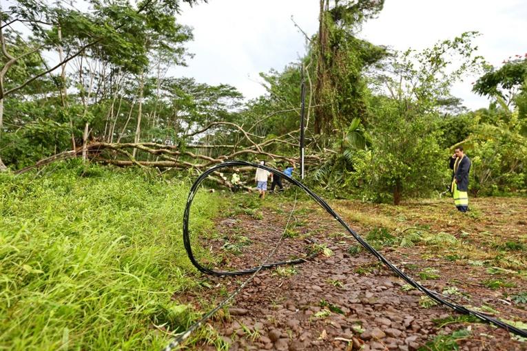 D'importants dégâts sur le réseau d'alimentation en électricité ont été constatés sur le plateau de Maraepa'i, à Afaahiti.. (photo : Commune de Taiarapu-Est)