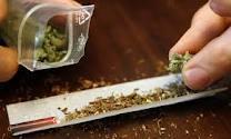 Fumer du cannabis depuis l'adolescence endommage irréversiblement le cerveau