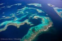 Les îles Cook disent avoir créé la plus grande réserve marine du monde