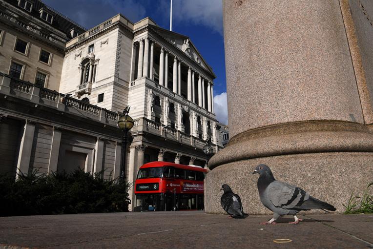 La course de pigeons, premier sport à reprendre en Angleterre