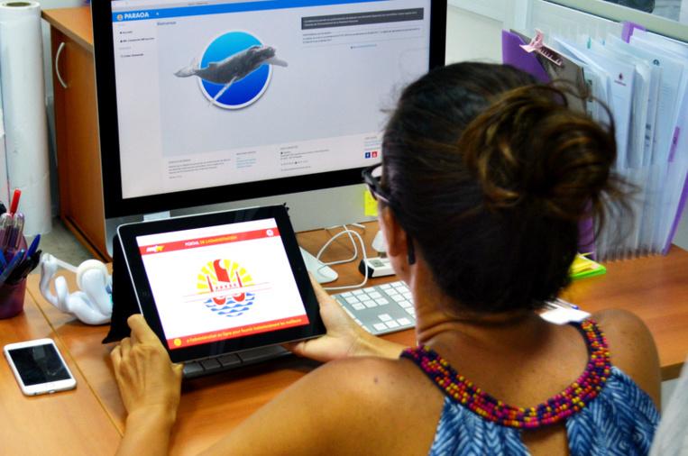 Le Pays emploie 8 584 agents, dont 50% de femmes