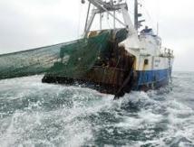 Pêche: le paysage sous-marin littéralement terrassé par les chaluts