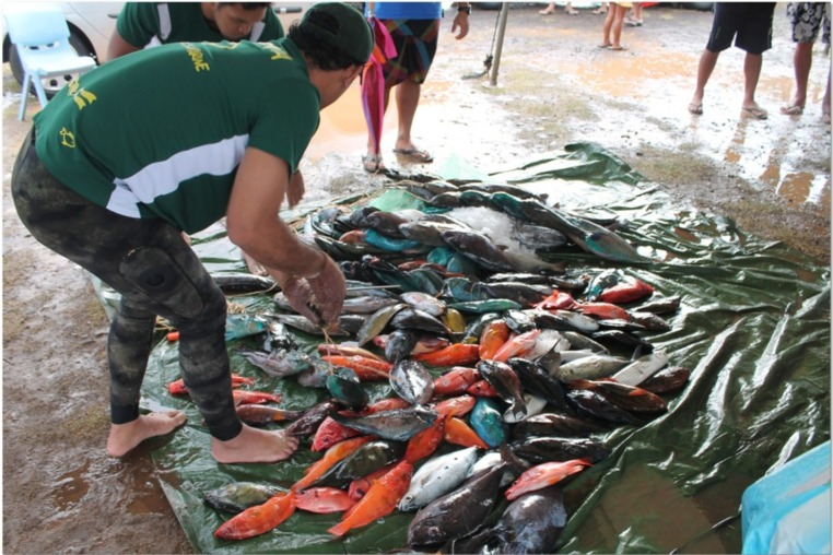 En mémoire d'un « géant » de la pêche: 1er mémorial TEIVA TERII et 2ième journée du championnat de Polynésie par équipes