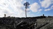 """Le """"pin miraculé"""" du tsunami va avoir une nouvelle vie à Rikuzentakata"""