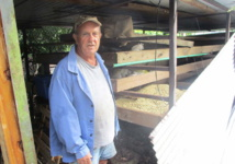A Rurutu, la crise relance l'agriculture
