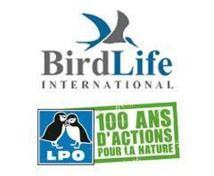 Biodiversité : BirdLife juge très insuffisants les efforts de l'UE