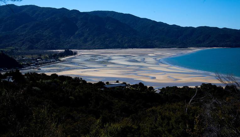 Sorti de confinement pour aller à la plage, un ministre néo-zélandais démissionne