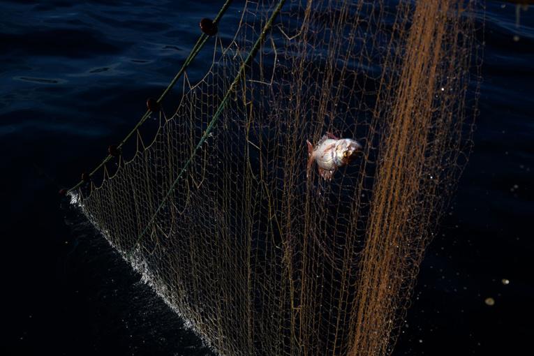 Des balises satellites pour lutter contre la pollution des filets fantômes en mer
