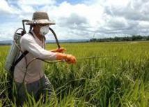 Vers une fiscalité incitative pour réduire l'usage des pesticides