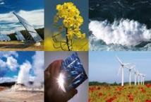 Energies renouvelables: les investissements baisseraient pour la 1ère fois en 8 ans