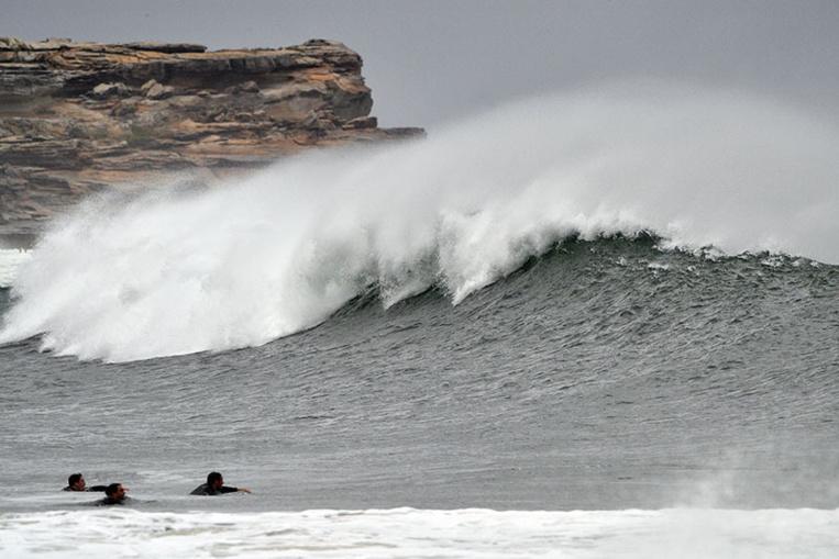 Un jeune surfeur tué par un requin en Australie
