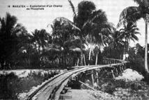 L'épopée du phosphate à Makatea (1917-1966)