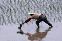 """Salon Slow Food: des agriculteurs chinois en révolte contre la """"malbouffe"""""""