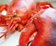 Un homard échappe à la casserole grâce à ses couleurs d'Halloween