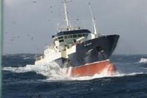 La pêche dans les mers Australes, un modèle de gestion du poisson, très lucratif