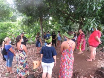 Immersion culturelle sur l'île sœur