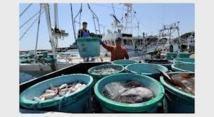 Lutte contre la pêche illicite : Bruxelles met en garde Fidji et Vanuatu