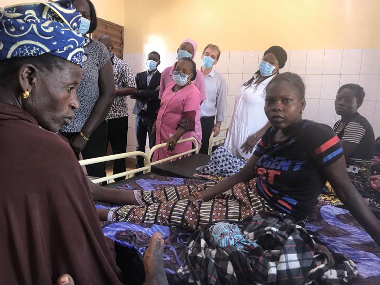 Les villes africaines menacées par un moustique asiatique vecteur du paludisme