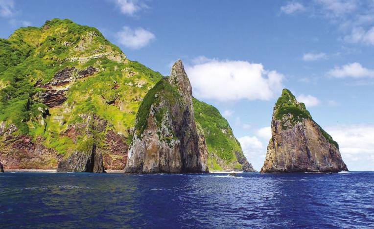 L'île d'Ata est cernée de toutes parts de falaises accores. Désertée après le rapt de McGraph, elle est aujourd'hui une réserve pour la faune et la flore (photo : Otago Daily Times).