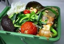 Comment lutter concrètement contre le gaspillage alimentaire ?