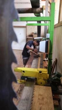 À Papara, la nouvelle ligne de scie envoie du bois