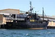 Les pays anti-pêche à la baleine appellent les militants au pacifisme