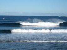 Nouvelle attaque de requin sur la côte Ouest australienne