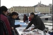 Marseille: les étals de poissonniers de retour sur le Vieux-Port