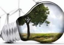2013, année de la transition énergétique pour Batho