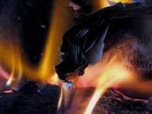 Autriche: un chien met le feu à la maison