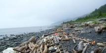Séisme de 7,5 et tsunami au large de l'Alaska