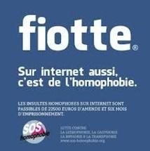 Homosexualité, racisme et droit français : insaisissables réseaux sociaux