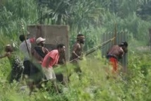Papouasie: de nouveaux affrontements intertribaux font 8 morts