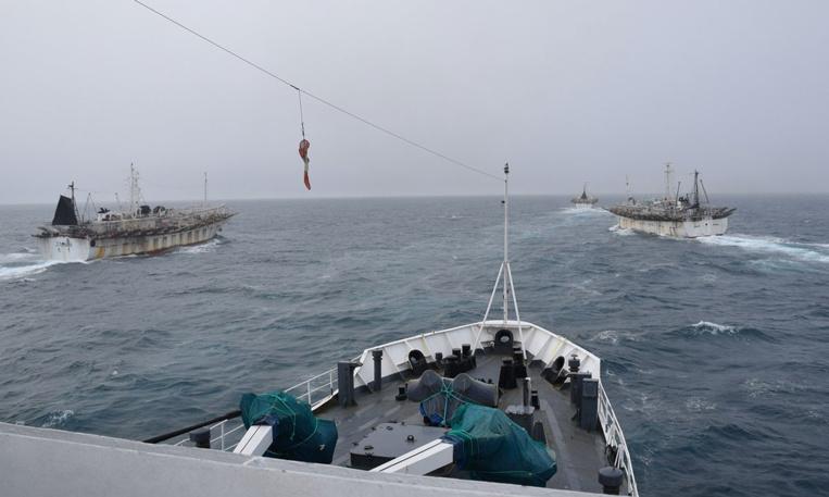 Quatre pays sud-américains s'allient contre la pêche illégale dans le Pacifique