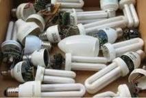 Le recyclage des ampoules basse consommation progresse