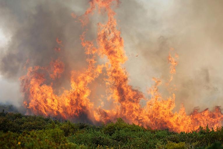 Un incendie ravage plus de 200 hectares à La Réunion