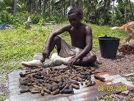 Pêche à l' holothurie : Vanuatu et la Papouasie maintiennent leur moratoire
