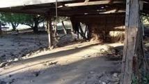 Séisme aux îles Salomon : Nouvelle réplique de magnitude 6,5