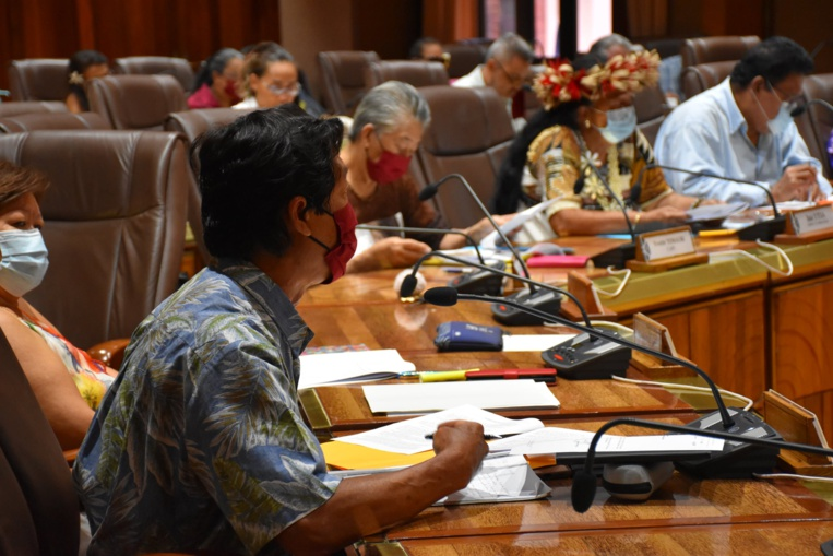 """Le projet de loi du Pays prévoit par ailleurs la création d'un """"conseil des arts et des lettres"""". Ce conseil sera consulté sur les attributions, suspensions et retraits des cartes d'artiste et sur l'attribution des aides individuelles."""