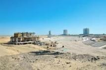 Le Turkménistan va planter trois millions d'arbres pour faire fleurir son désert
