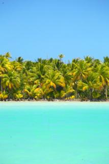 Que faire sur un atoll oublié du monde? Les habitants de Tematangi y vivaient d'une manière d'autant plus précaire qu'ils n'étaient pas des Paumotu, mais des personnes dont les parents avaient été exilés de Tahiti à la suite d'une guéguerre locale.