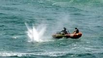 La police a fait feu sur l'un des requins